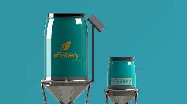 Indonesian IoT startup eFishery gets pre-Series A funding from Aqua_spark, Ideosource